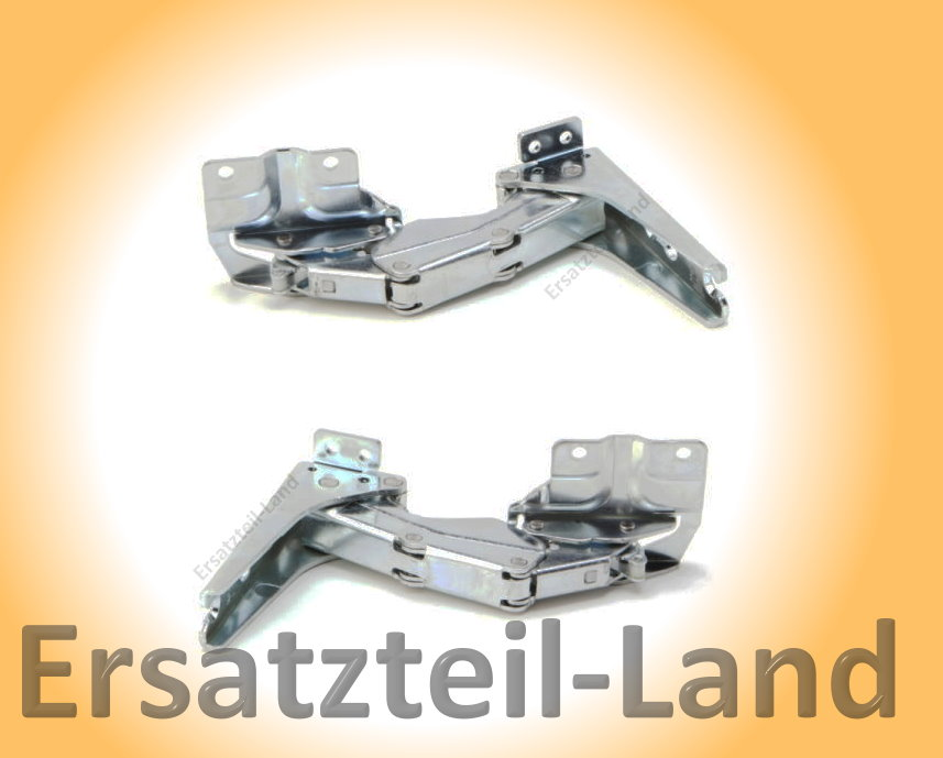 Tuerscharniere-Bosch-Siemens-a-Miele-2er-Set-481147-02